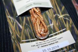 Meuniere-Mehlwürmer