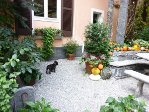 Ticino octobre 2011 024