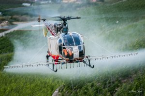 3 Heli spray20159