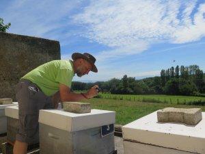 jacques-fabry-avioclimatologue-estime-que-la-surmortalite-des-abeilles-est-du-a-la-pollution-atmospherique