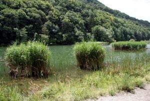 blog-48-lac-de-montorge